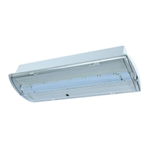 Fulgur 21179 - LED Аварийна лампа FIWA SELENA 460-3 LED/230V IP42