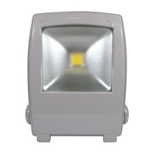 LED Рефлектор FLOOD FE-N LED/30W/230V IP65
