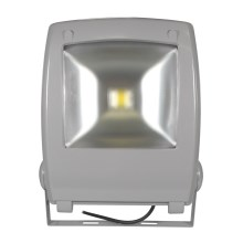 LED Рефлектор FLOOD FE-N LED/50W/230V IP65