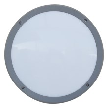 Luxera 48308 - Екстериорна Стенна лампа на сензор NUVOLA 30xLED SMD/13,5W/230V IP65